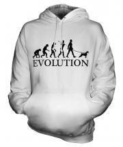 Irish Terrier Evolution Unisex Adult Hoodie
