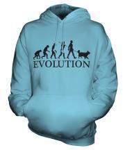 Shetland Sheepdog Evolution Unisex Adult Hoodie
