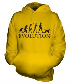 Wheaten Terrier Evolution Unisex Adult Hoodie