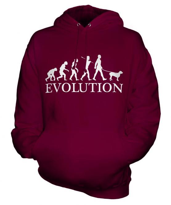 Spinone Italiano Evolution Unisex Adult Hoodie