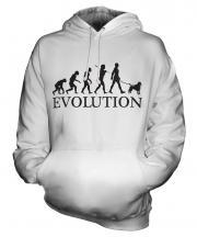 Poodle Evolution Unisex Adult Hoodie