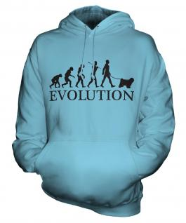 Tibetan Terrier Evolution Unisex Adult Hoodie